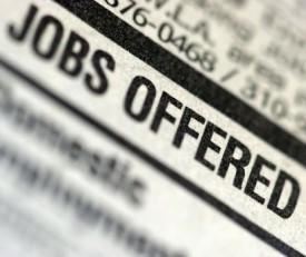 EmploymentLogo